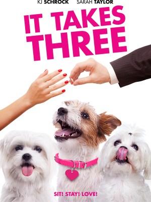 It Takes Three (2019) (Movie)