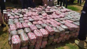 Yobe State Chapter Of NDLEA Intercepts, Seizes Cannabis Worth N10 Million
