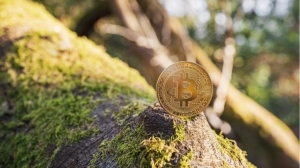 Cryptocurrency Likely to Be More Environmentally Friendly Than Traditional Banks – Press release Bitcoin News