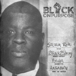 Salaam Remi - Say It Loud (Everybody Black Re-Flip) [feat. CeeLo Green]