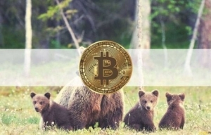 Bearish: Bitcoin Transfers to Spot Exchanges at Highest Levels Since March 2020 Crash
