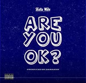 Shatta Wale – Are You Ok