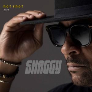 Shaggy – Buk-In-Hamm Palace (Hot Shot 2020)
