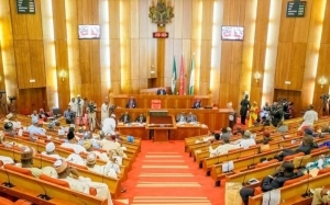 Senate Rejects Nnamdi Anyaechie, National Assembly Commission Nominee