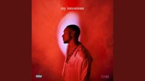 Funbi - my intentions