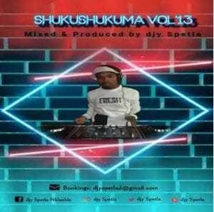 Djy Spetla – Shukushukuma vol.13 Mix