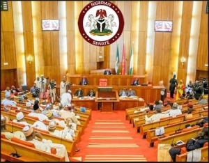 Senate May Reject Onochie For INEC's Job (Read Details)