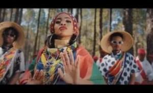 Zanda Zakuza – Afrika ft. Mr Six21 DJ, Bravo De Virus & Fallo SA (Video)