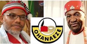Igbos allowing Nigerian Civil War bitterness to affect them: John Nwodo