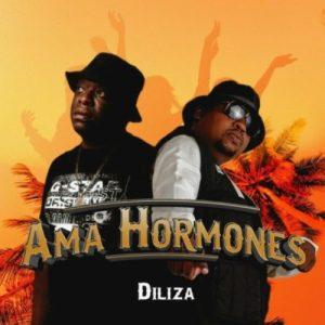 Diliza – Ama Hormones ft. Professor
