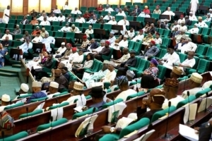 BREAKING!!! Reps Make Shocking Move To Legalize Marijuana In Nigeria