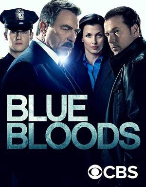 TV Series: Blue Bloods S10 E13 - Reckless