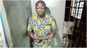 GOOD ONE!!! Police, Residents Arrest Gang Member During Robbery In Lagos