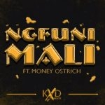 KXD BEATS – Ngfuni Mali ft Money Ostrich