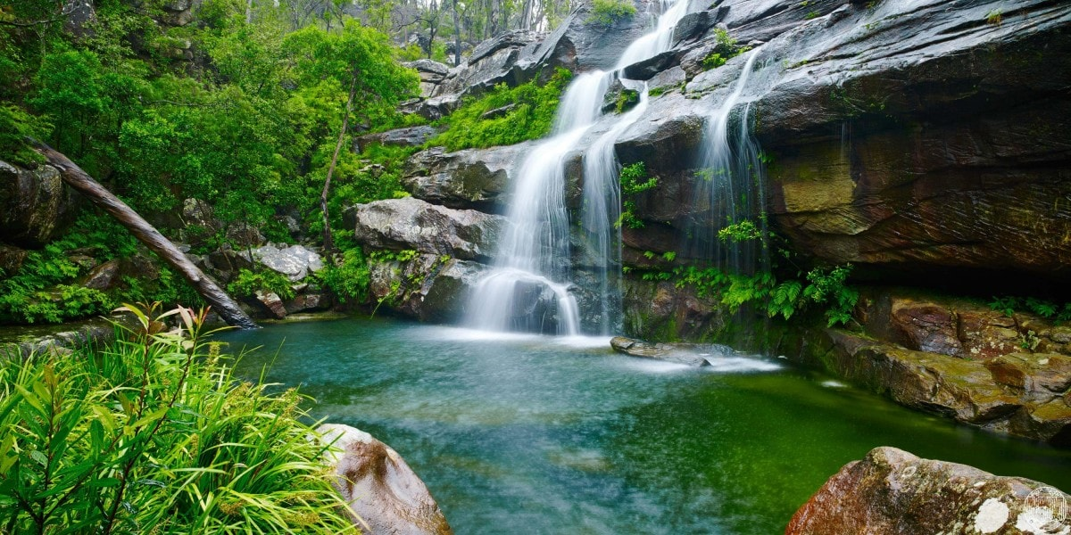 6 Wild Swimming Paradises in NSW Rachel Lewis Andy Lewis Scout's Falls, waterfall, swimming hole, rocks, bushes, water