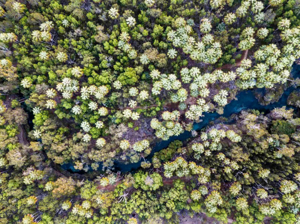 Pat Corden Patrick Explorer of the month drone photography