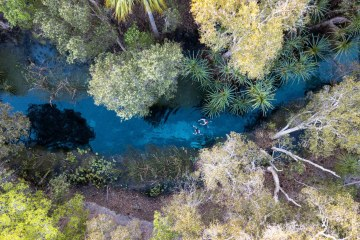 Pat Corden Bitter Springs Northern Territory NT drone shot photography palm grove