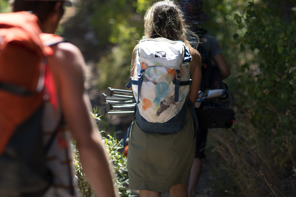 the north face, homestead collection, daytripper, backpack