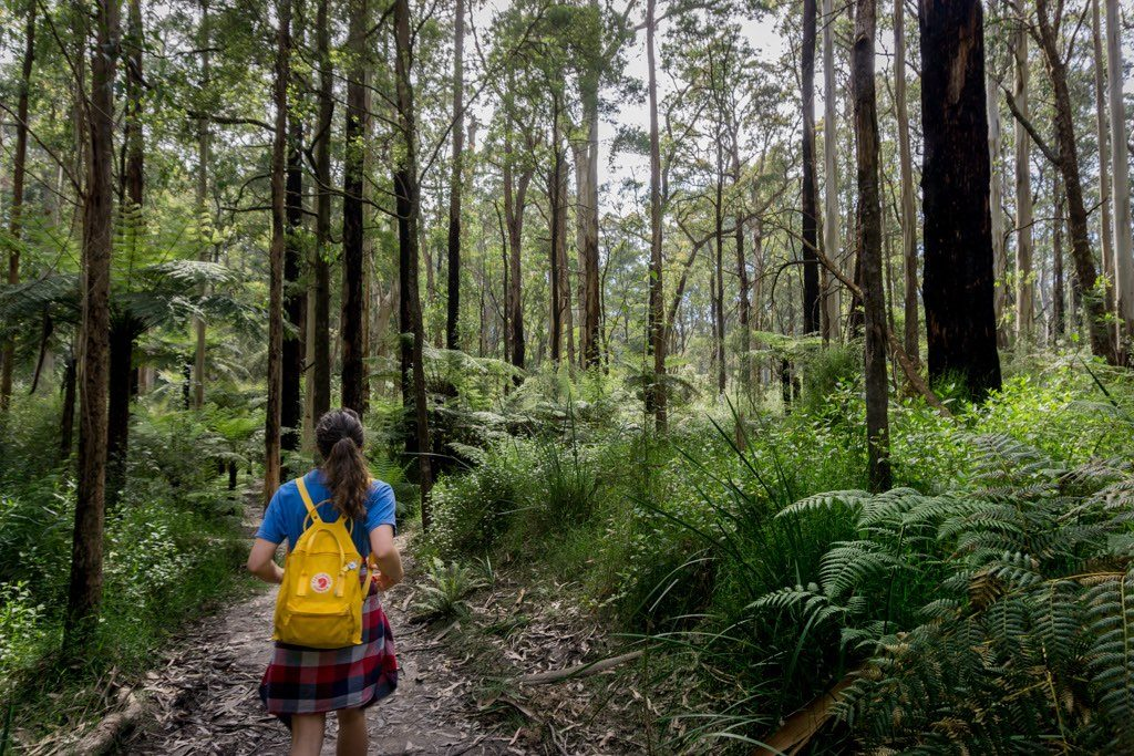 Wet Feet And Waterfalls // Cumberland River Trail (VIC), Isobel Campbell, Walking through bush, backpack, yellow, girl, ferns, trees