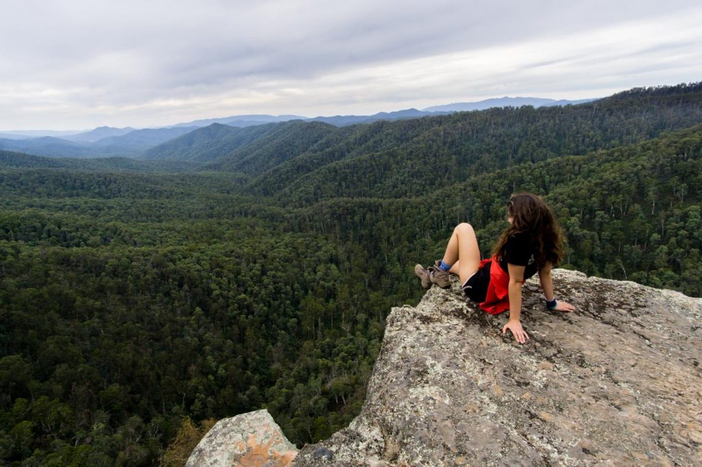 Mt Cobbler Plateau Circuit // Alpine National Park (VIC), Isobel Campbell, Looking out from Dandongadale Falls, lookout, view, hiker, forest
