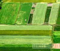 Почти 10 миллионов украинцев воспользовались правом на приватизацию земли, – ВБ