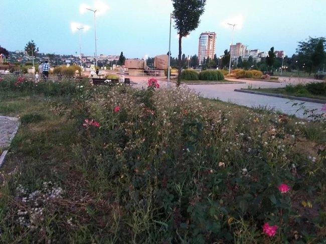 Стан Абхазія: в мережі показали запущену територію біля Донбас Арени 04