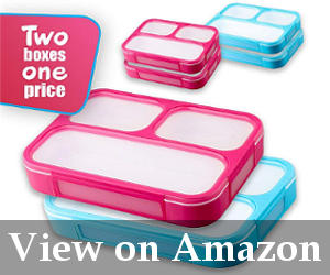 5 Best Bento Box For Kids Reviewsbuyers Guide January 2019