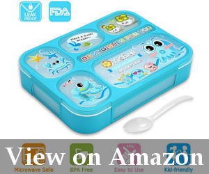 best bento lunch box for kids reviews