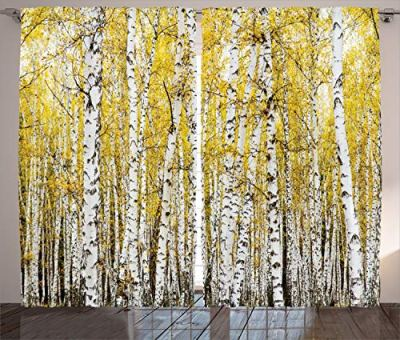 Ambesonne Forest Curtains, Autumn Birch Forest Golden Yellow Leaves