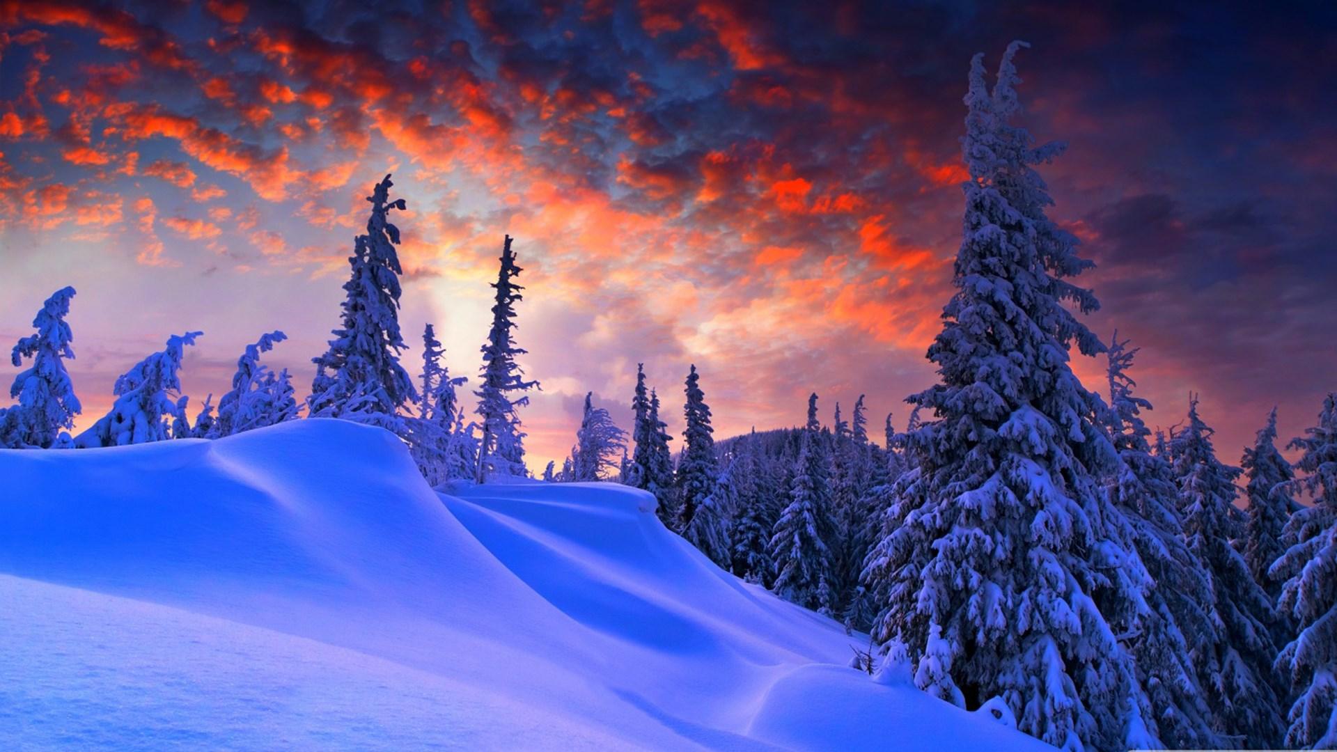 get winter wallpapers microsoft