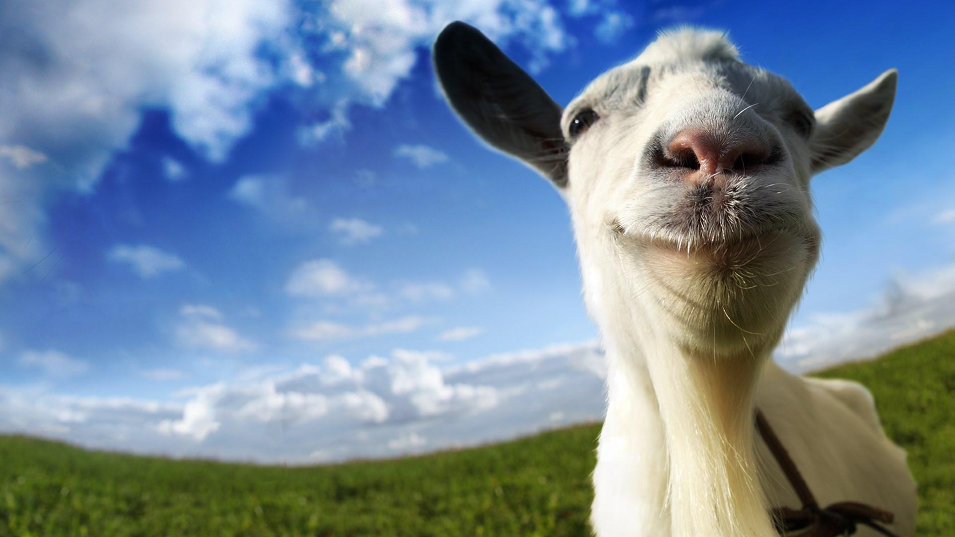 buy goat simulator windows