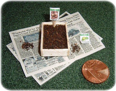 miniature seed tray