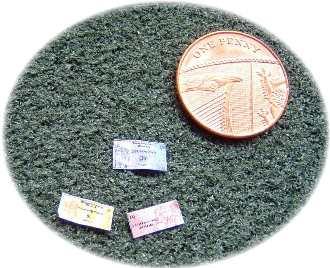miniature money