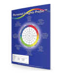 Personal Insights Profile Self-Scoring DISC Assessment (110-W) 22 pages