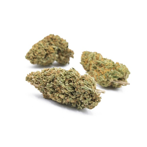 Got Hemp 2 - CBD Store - Hawaiian Haze CBD Flower