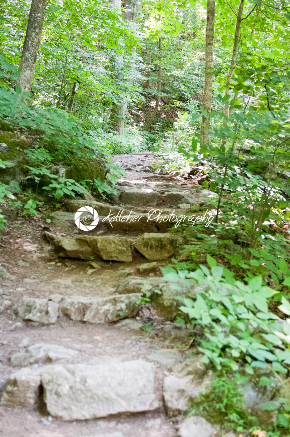 Rocky pathway steps at Crabtree Falls along the Blue Ridge Parkway near Asheville North Carolina - Kelleher Photography Store