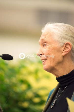 Rosemont, PA – September 15: Dr. Jane Goodall speaks at The Agnes Irwin School in Rosemont on September 15, 2015 - Kelleher Photography Store