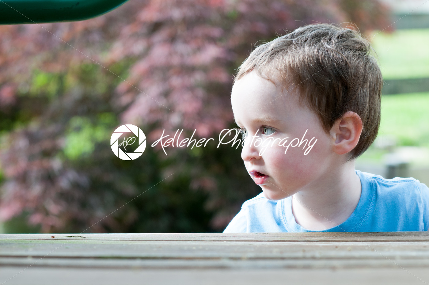 Young boy having fun on a swing set - Kelleher Photography Store