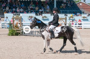 DEVON, PA – MAY 25: Riders performing with their horses at the Devon Horse Show on May 25, 2014 - Kelleher Photography Store