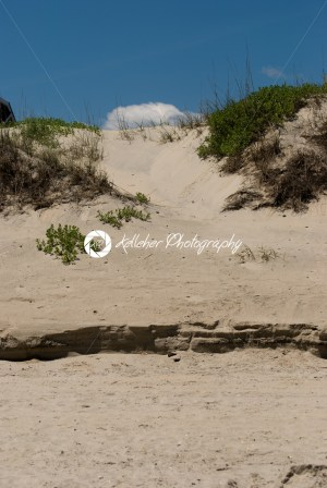 Jockey's Ridge Sand Dune in the Outer Banks, North Carolina. - Kelleher Photography Store