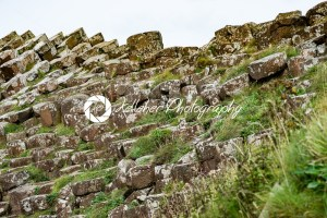 The Giant's Causeway in County Antrim, Northern Ireland - Kelleher Photography Store