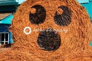 ALLENTOWN, PA – OCTOBER 22: Halloween Decorations at Dorney Park in Allentown, Pennsylvania - Kelleher Photography Store