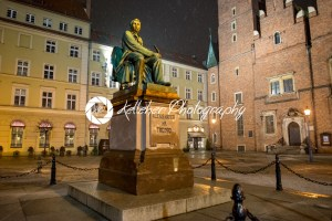 Wroclaw, Poland – March 6, 2018: Neoclassical bronze statue of famous Polish writer Alexander Fredro, 1897, by Leonard Marconi at night, Market Square - Kelleher Photography Store