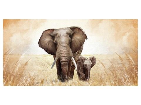 Bilder von Elefanten strahlen Kraft und Wrme aus