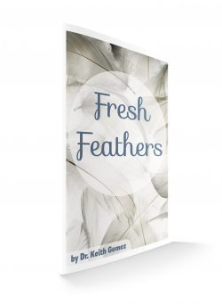 Fresh Feathers- anner