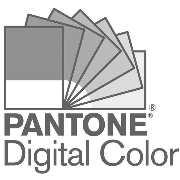 Pantone Color Bridge Guida Colori Non Patinati