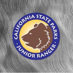 Junior Ranger Round Logo Magnet