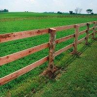 Board Horse Fencing |Wood Fencing | RAMM