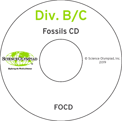 Fossils CD – Division B