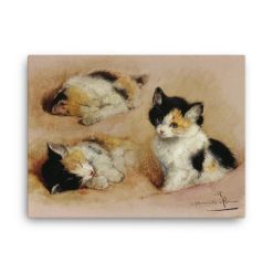 Henriette Ronner-Knip: Study of a Sleeping Kitten, Canvas Cat Art Print